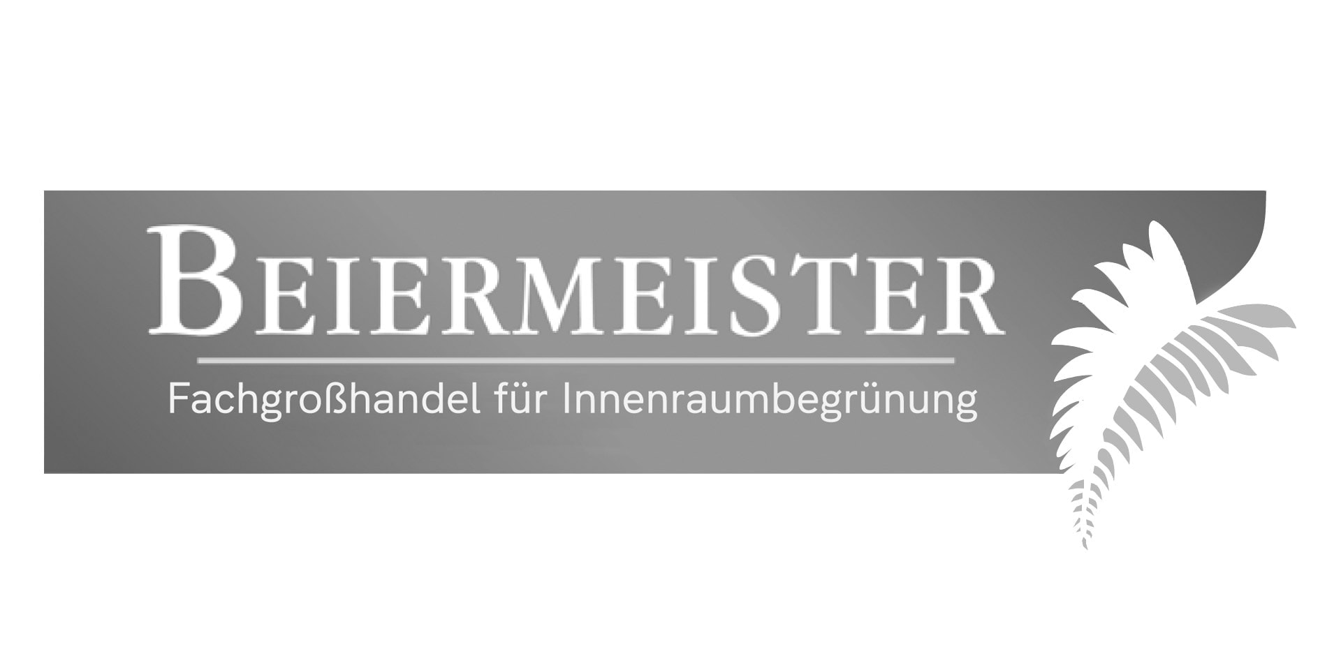 Beiermeister