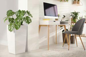 Florafilt@Home-office